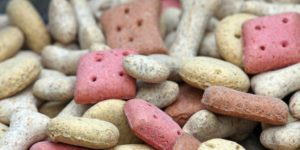 Pet Treats Contract Manufacturing for Animal Products